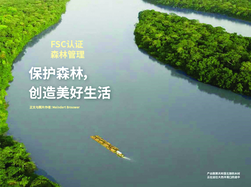 INTERHOLCO's production site speaks Chinese in the latest translation of Meindert Brouwer's 'Central African Forests Forever'